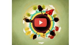 CamCom - Innovazione